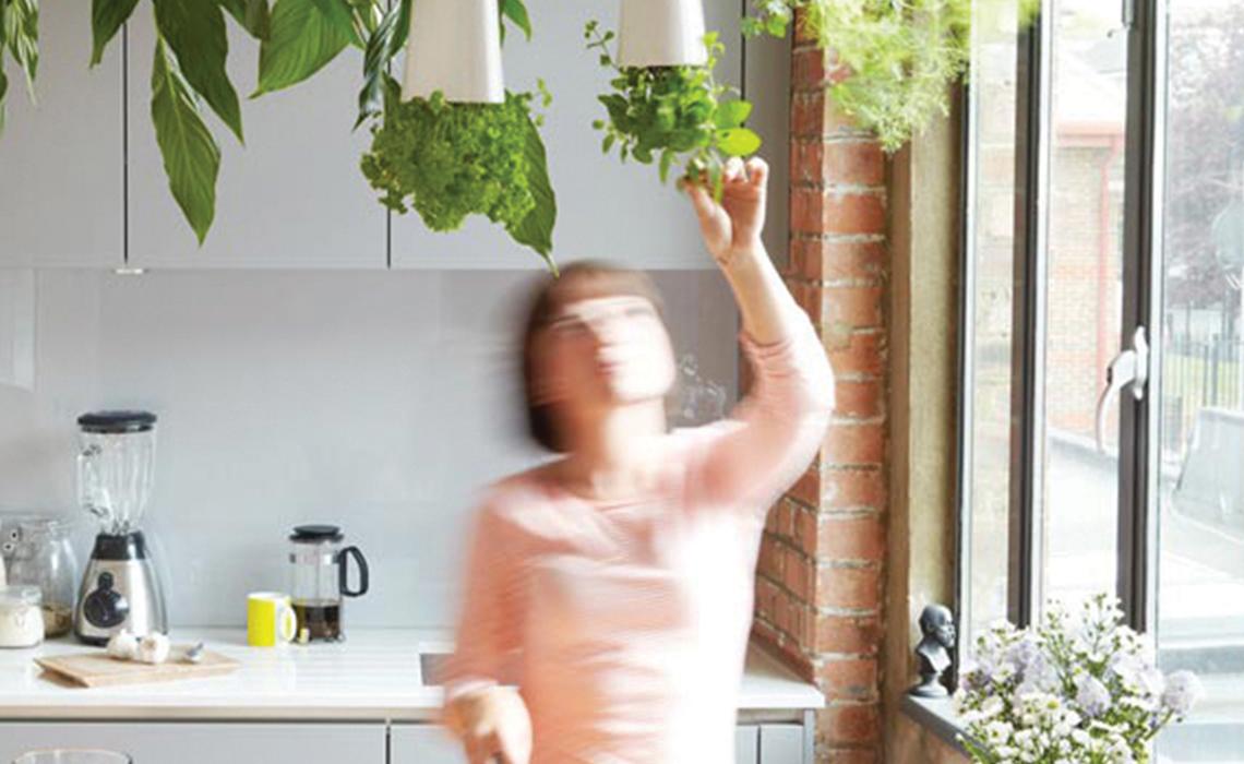 Ev Bahçeciliğine Giriş