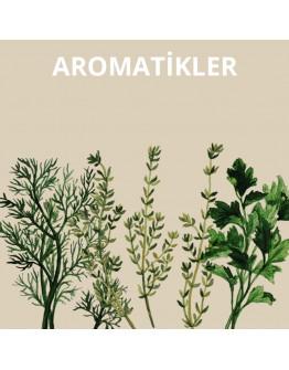 Aromatikler