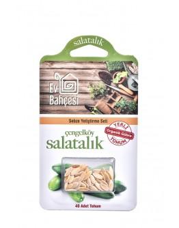 Ev Bahçesi Çengelköy Salatalık Sebze Yetiştirme Seti Organik Yerli Tohum